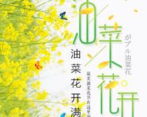 油菜花开满地黄海报PSD素材