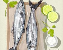 柠檬与海鱼展示PSD素材