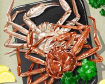 海鮮螃蟹食物PSD素材