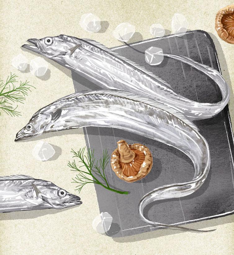 帶魚海鮮食材PSD素材