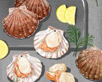 扇貝海鮮食物PSD素材