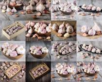 大蒜調料食材攝影高清圖片