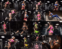 国外健身房女人摄影高清图片