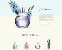 化妆品网页设计PSD素材