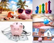 货币理财小猪摄影高清图片