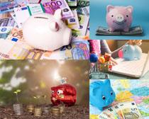 存钱罐小猪理财摄影高清图片