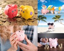 小猪硬币金融理财摄影高清图片