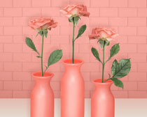 玫瑰花瓶展示PSD素材