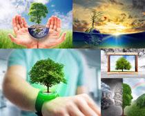 生活環境創意攝影高清圖片