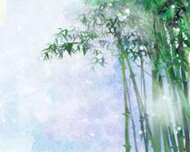 竹子风景绘画时时彩投注平台