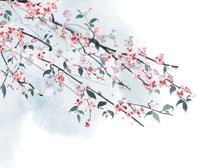 枝头花绘画PSD素材