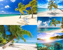 美丽的海边风景摄影高清图片