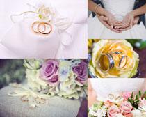 婚禮戒指花朵攝影高清圖片