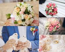 一束鮮花與鴿子攝影高清圖片