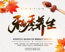 秋季養生文化PSD素材