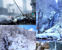 树木雪景风光摄影高清图片