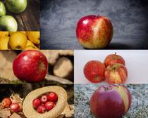 漂亮的苹果拍摄高清图片