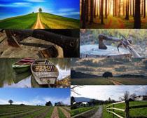 美丽的自然风光摄影高清图片