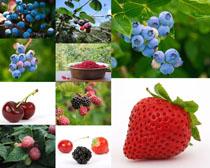 草莓蓝梅樱桃水果摄影高清图片
