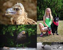 女人與動物拍攝高清圖片