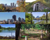 郊外自然風光拍攝高清圖片