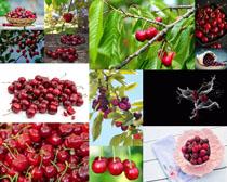 樱桃果子摄影高清图片