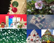 圣誕節禮物裝飾拍攝高清圖片