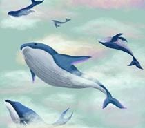 天上飞的鲸鱼插画PSD素材