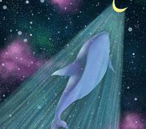 卡通画鲸鱼PSD素材