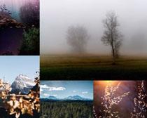 幽美的自然风光摄影高清图片