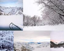 美丽的雪景风光拍摄高清图片
