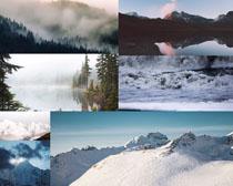 美丽森林雪景拍摄高清图片