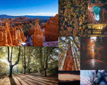 树木与山峰拍摄高清图片