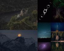夜色樹木景色攝影高清圖片