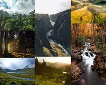 美丽风光山峰树木摄影高清图片