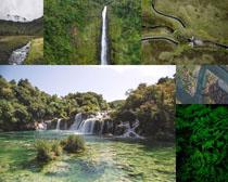 绿色森林美景拍摄高清图片