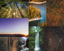 大自然樹林瀑布風景攝影高清圖片