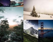 雪山樹木寫真攝影高清圖片