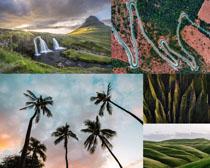 高山瀑布椰树风景摄影高清图片