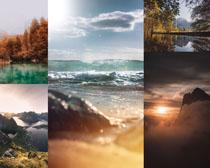 大海树木风光拍摄高清图片