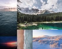 樹林大海風光拍攝高清圖片