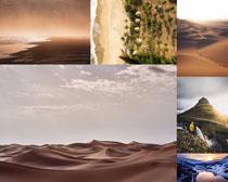 沙漠風景風光拍攝高清圖片