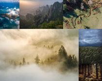 云雾森林高山风景摄影高清图片
