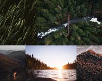 森林海島景色攝影高清圖片