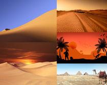 沙漠風光景色拍攝高清圖片
