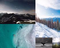雪山大海風景拍攝高清圖片