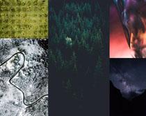 森林道路夜色背景攝影高清圖片