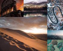 沙漠道路森林風景攝影高清圖片