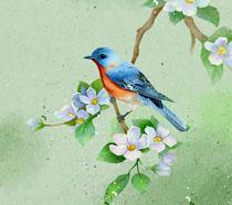 色彩绘画小鸟花朵工笔画PSD素材