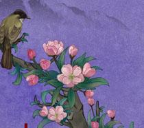 春天花朵小鸟工笔画PSD素材